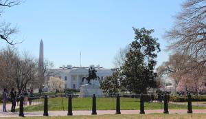 The White House and Washington Monument