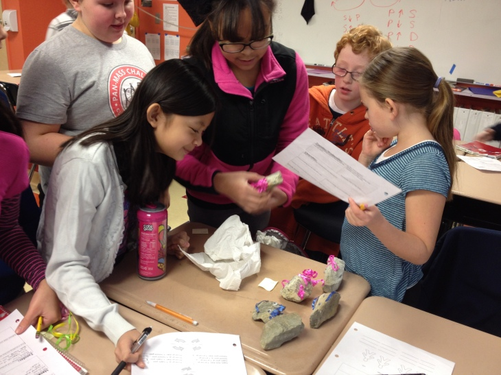 Students shop for pet rocks