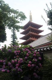 Part of the Buddhist temple