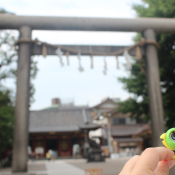 Loki at the Shinto Shrine