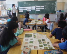 Students made posters with photos from the rice fields.