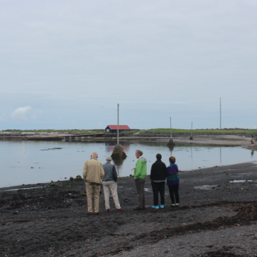 The coast near Reykjavik