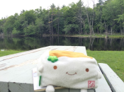 Tofu San at the picnic table