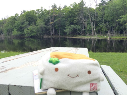 Tofu San at the picnic table