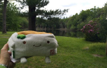 Tofu San at the Pond