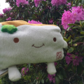 Tofu San smelling theFlowers