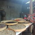 Coffee Beans PreRoasted