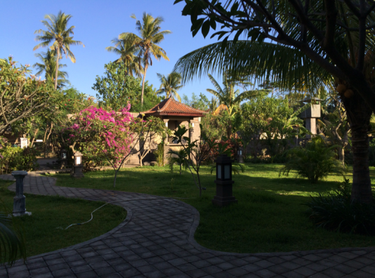 Hotel Courtyard Garden Area