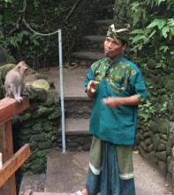 Monkey Security