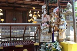 Breast Shrine 2