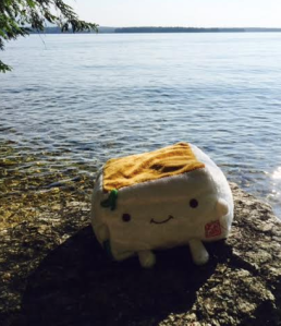 Tofu San at Lake