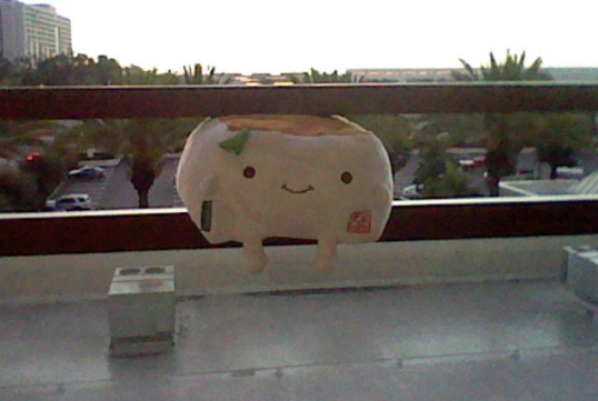 Tofu San looking out on a balcony at the palm trees