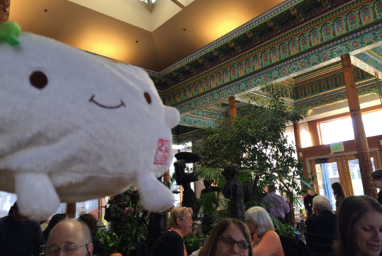 Tofu San visits the Dushanbe Tea House, presented as a gift to the city of Boulder by its sister city in Tajikistan.