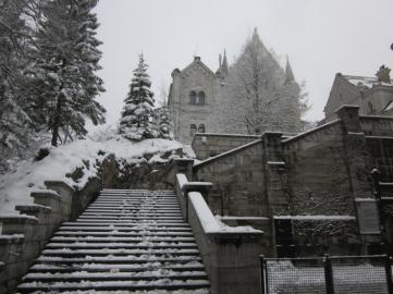 Neushwanstein Castle 3
