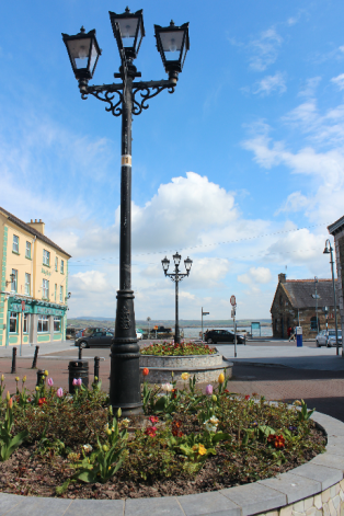 Youghal Flowers