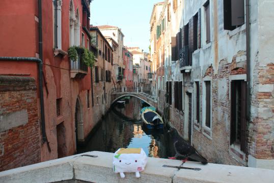 Tofu San at a Canal