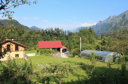 Farm Sheds.png