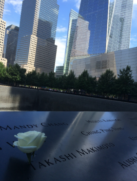 Ground zero rose