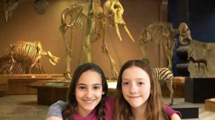 museu-de-historia-natural