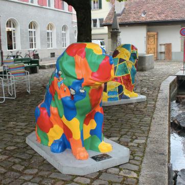 St. Bernards in Bern