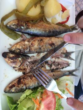 Sardines in Lisbon