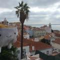 Lisbon Tofu SanView