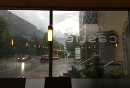 The rain was super loud from inside the restaurant