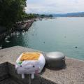 Tofu San at ZurichLake
