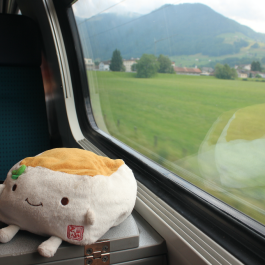 Riding the Train, Switzerland