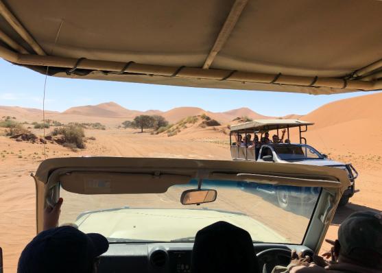 Driving in dunes
