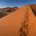 Dune 45 Pano