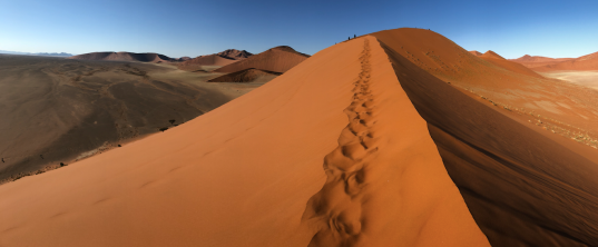 Dune 45 Pano.png