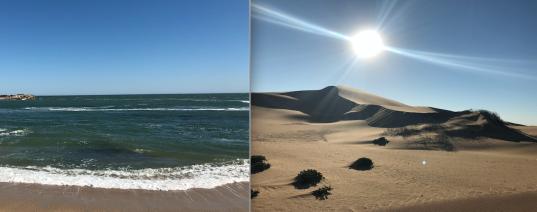 Ocean Desert.png