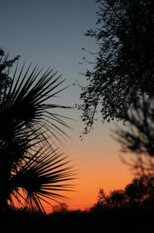 Sunset at Campsite