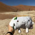 Tofu San atDeadvlei