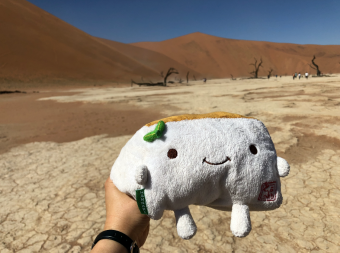 Tofu San at Deadvlei