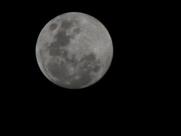 Delta Moon.png